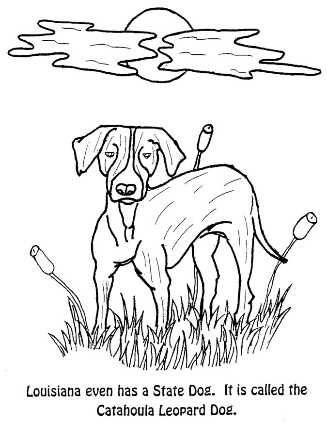 Coloring Pages Office Of Governor John Bel Edwards