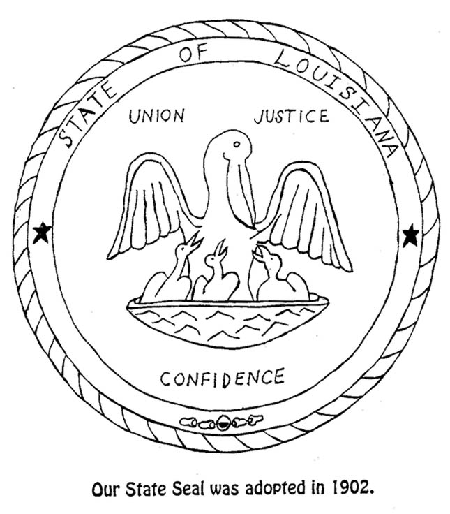 Louisiana State Tree Coloring Page - Coloring Home | 736x645
